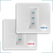 EBV'CHECK IgG in EBV'CHECK IgM ® (All Diag)